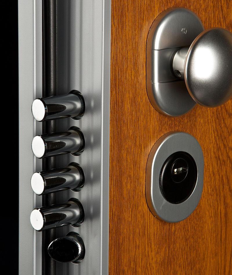 puerta acorazada asso 10